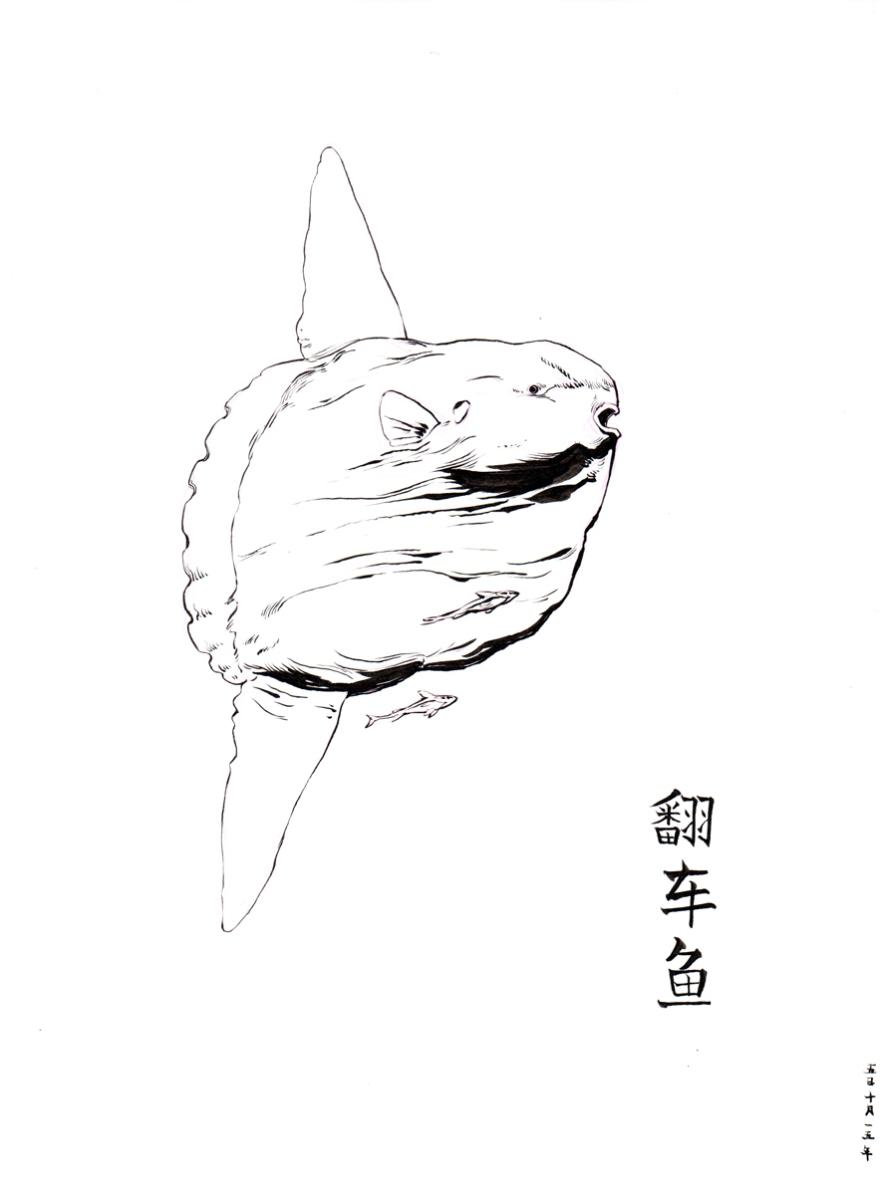 DanielZhang20151005_01